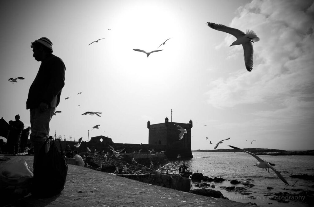 morocco harbour essaouira fine art